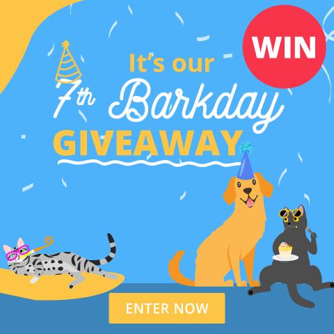 7th Barkday Giveaway