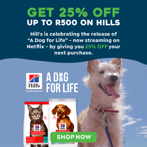 Hill's - A Dog for Life Campaign