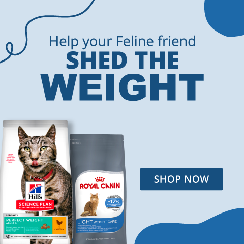 Cat Food - Shed the Weight