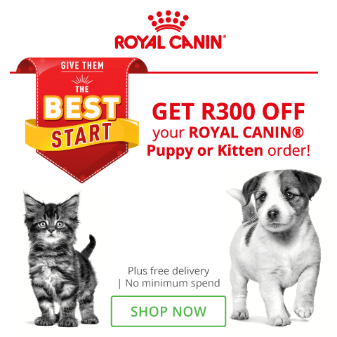 Royal Canin Puppy food Kitten Food  South Africa