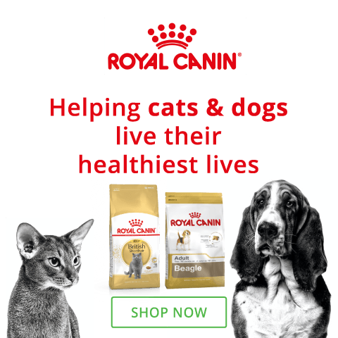 Royal Canin South Africa
