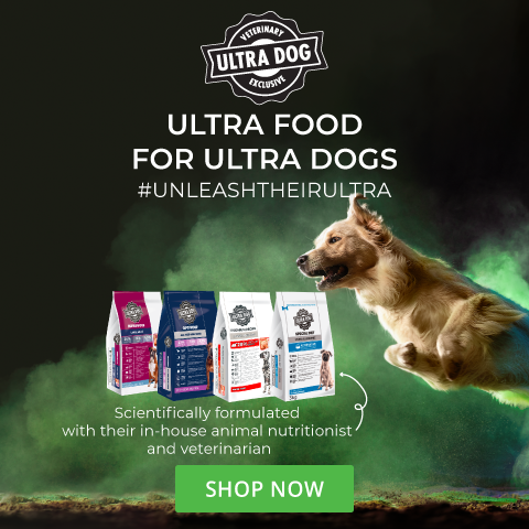 Ultra Dog - May 2021