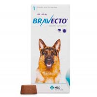 Dog Medication