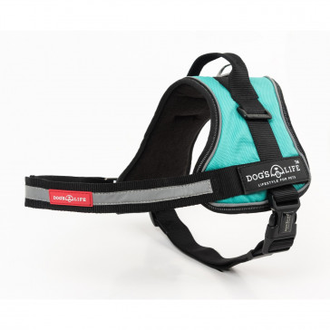 Dog's Life No Pull Control Handle Dog Harness - Turquoise