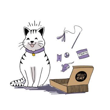 Hello Cat Box - 6 Box Subscription