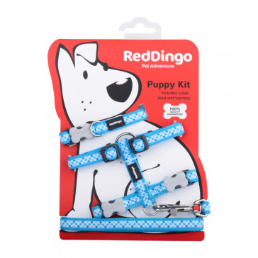 Red Dingo Puppy Harness, Collar & Lead Pack - Turquoise Gingham