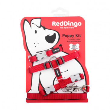 Red Dingo Puppy Harness, Collar & Lead Pack - Red