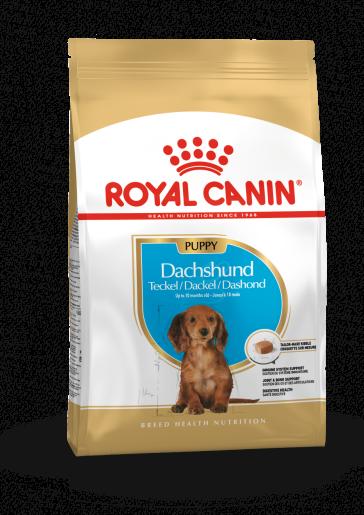 Royal Canin Dachshund Junior Puppy Food