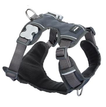 Red Dingo Padded Dog Harness-Grey