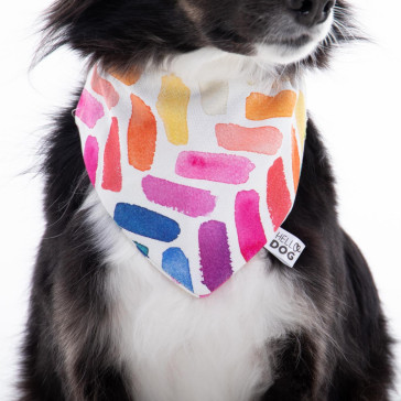 'The Bella' Spring Hello Dog Box Bandana - Medium Large