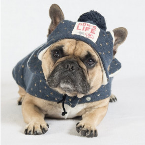 Dog's Life Under The Moon and Stars Hat - Navy
