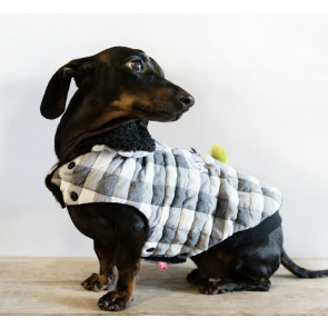 Dog's Life Stay Awesome Checkered Cape - Black