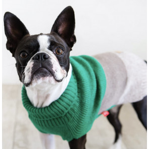 Dog's Life Geo Knit Polo Neck Dog Jersey - Green