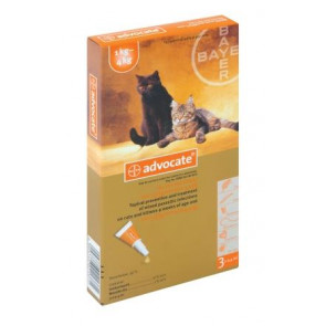 Advocate Kitten & Cat Tick, Flea & Worm Spot-On Treatment -1-4kg