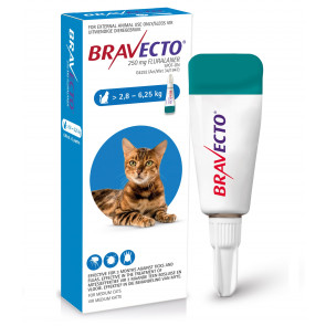 Bravecto Medium Cat 2.8-6.25kg Spot On Tick & Flea
