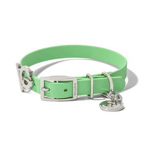 Valgray Premium Waterproof Small Breed Dog Collar - Pistachio & Silver