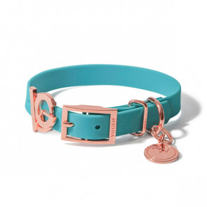 Valgray Premium Waterproof Small Breed Dog Collar - Turquoise & Rose Gold