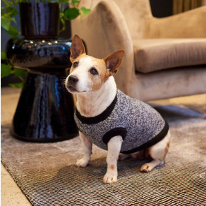 Lucky & Lou The Ziggy Knitted Dog Jersey