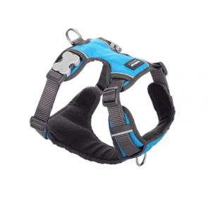 Red Dingo Padded Dog Harness-Turquoise