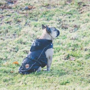 Dog's Life Relecta Windbreaker Dog Jacket - Black
