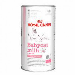 Royal Canin Growth Babycat Milk