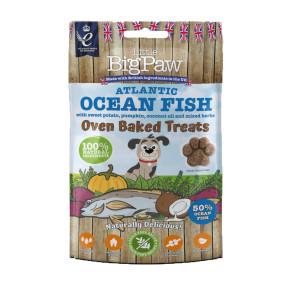 Little Big Paw Oven Baked Atlantic Ocean Fish Dog Treats