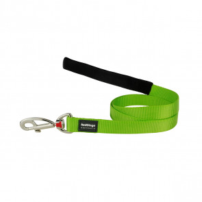 Red Dingo Fixed Dog Lead - Lime