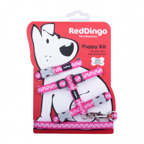 Red Dingo Puppy Harness, Collar & Lead Pack - Gingham
