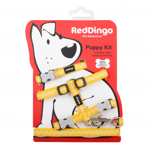 Red Dingo Puppy Harness, Collar & Lead Pack - Yellow Gingham