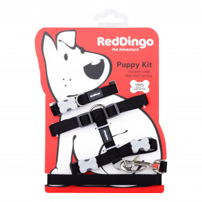 Red Dingo Puppy Harness, Collar & Lead Pack - Black