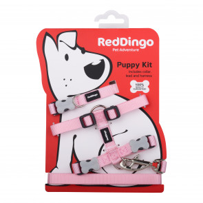 Red Dingo Puppy Harness, Collar & Lead Pack - Pink