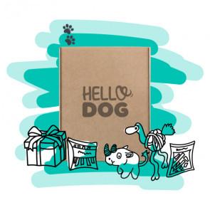 Hello Dog Medium Dog Box - 10Kg to 20kg