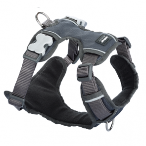 Red Dingo Padded Dog Harness-Grey