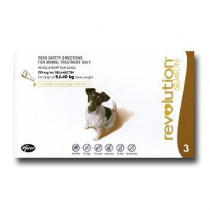 Revolution Small Breed 5-10kg Dog Parasiticide