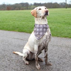 Scruffs Insect Shield Collar Slip-on Dog Bandana