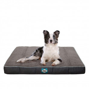 Sealy Cushy Comfy Dog Bed