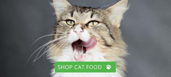 Shop Cat Food