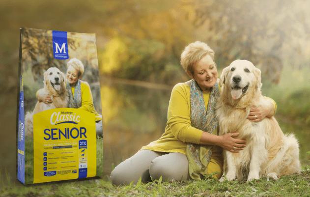 Montego Senior Dog